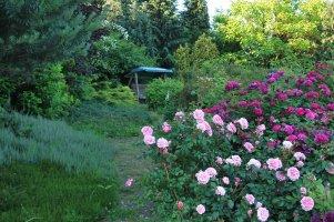 visit-us-in-summer